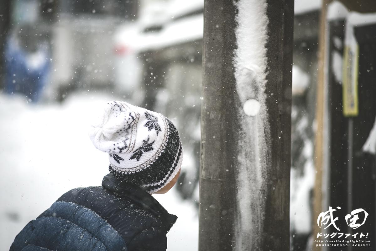 snowfall4